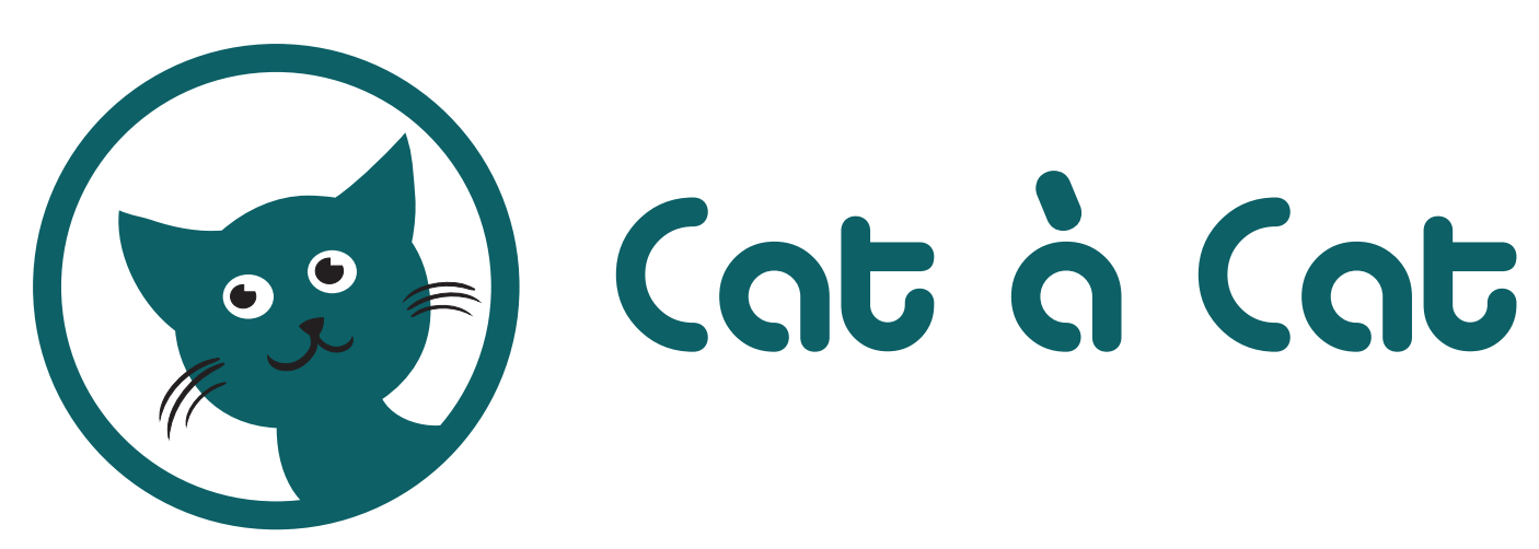 Cat à Cat – Association lensoise